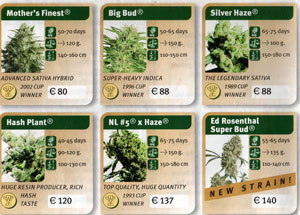 seedscatalogue2