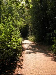 path_summer_warm_280404_m.jpg