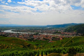 rhone