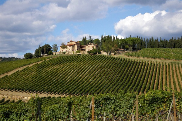 best wine tours in tuscany italy - photo#23