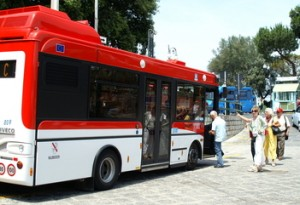 sorrentobus