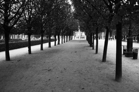 quietparis_main