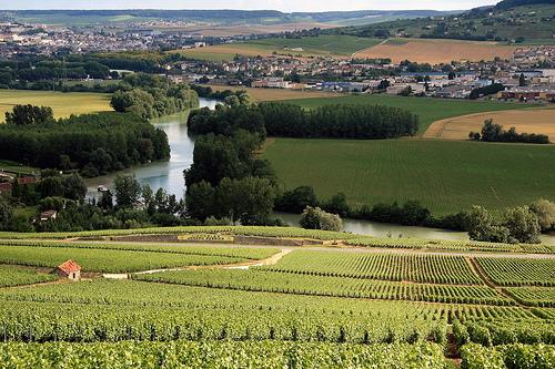 Wine Tasting In France Whygo Paris