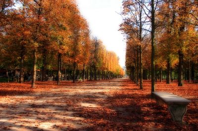 parisautumn